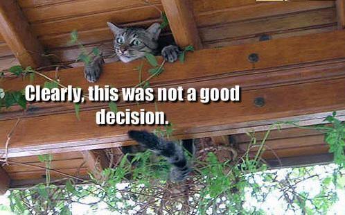 Bad Decisions December 2010 �...